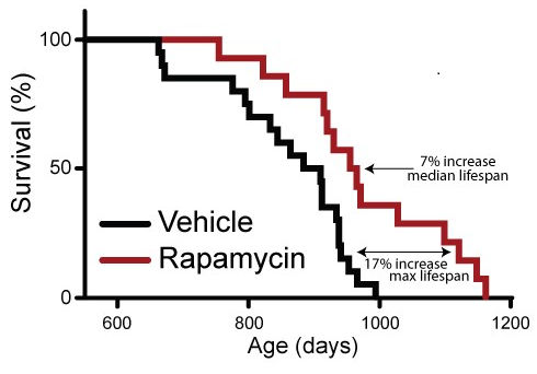 Source Fig 1. from Rapamycin An InhibiTOR of Aging Emerges From the Soil of Easter Island.