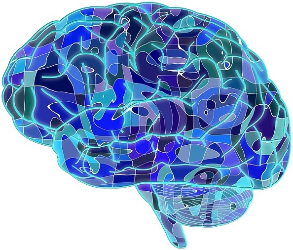 Garb-aging is particularly evident in Alzheimers and Parkinsons