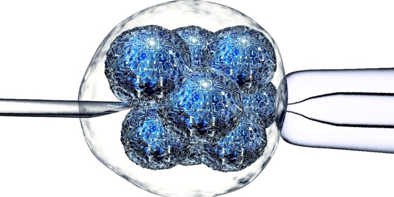 reverse stem cell decline can we reprogram our stem cells