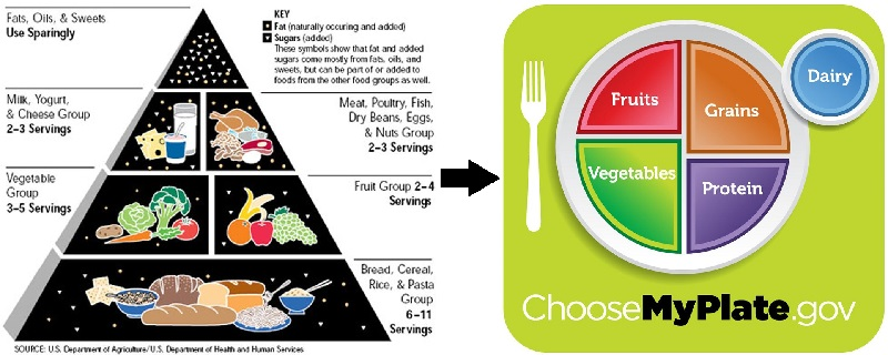 USDA food pyramid and MyPlate
