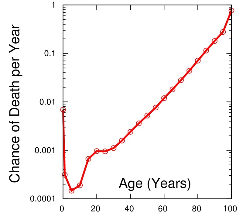 Estimated probability of a US person dying at each age (2003.)