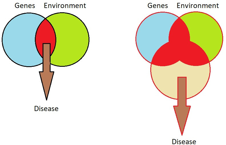 Figure 7.2. The major risk factors for disease. Adapted from Figure 7.2 - Geroscience by Felipe Sierra.