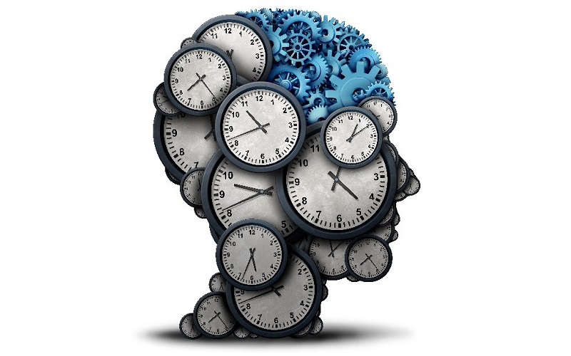 Scientists discover genetic clock that measures brain aging.